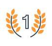 Erfolgsgarantie Icon
